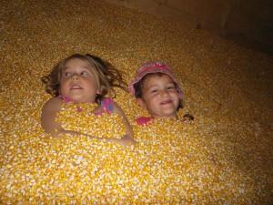 ein Bad im Mais