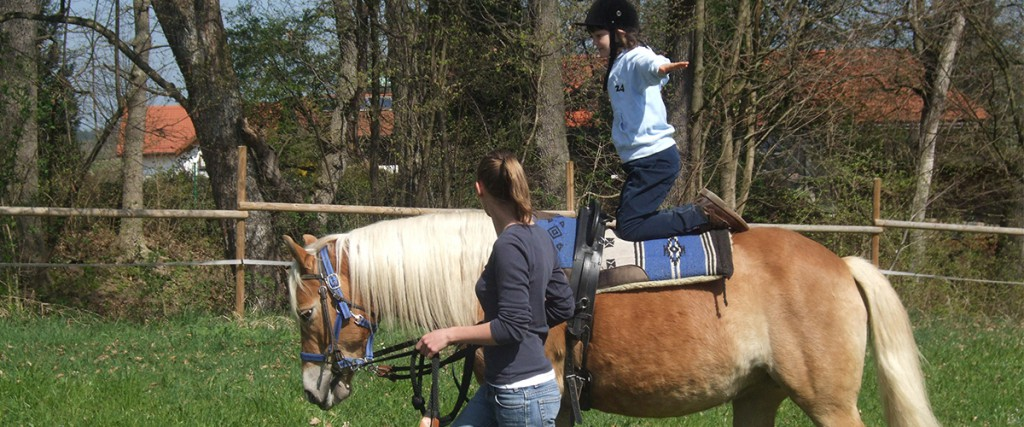 Pferdekunststückchen